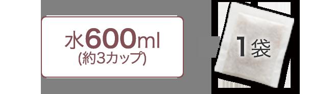 水600ml(約3カップ)+1袋